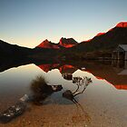 Dove Lake Bonsai II by tinnieopener