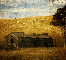Remnants Of A Rural Dream Life by reflector