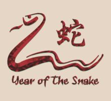 Chinese Year of The Fire Snake 1977 T-Shirt by ChineseZodiac