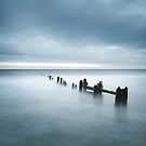 Sandsend Groynes, Whitby by MartinWilliams