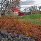 Little Red House, Muir of Dinnet, Aberdeenshire by MelissaSue