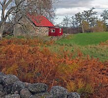 Little Red House, Muir of Dinnet, Aberdeenshire by MelissaSue