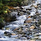 Cold Mountain Stream III by Rob Goforth
