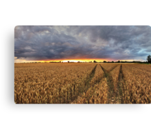 Panoramic Sunset Over Fields Canvas Print