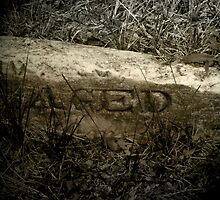 "Butler Cemetery III - ""Aged: Every day then... never again."" Broken headstone by gjameswyrick"