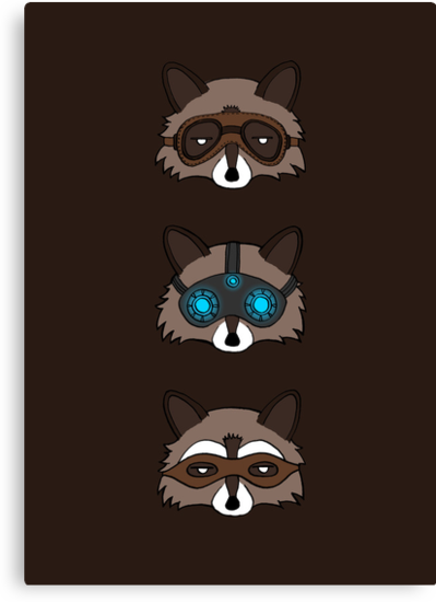 Raccoons by freeminds