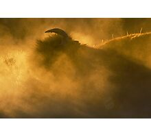 Thunder Beast Makes Fire Photographic Print