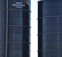 Between Two Silos by TheaShutterbug