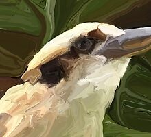 Kookaburra by ChrisButler