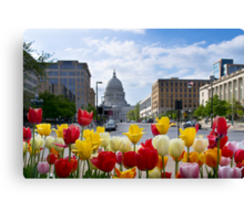 Colourful Wisconsin Capitol - USA Canvas Print
