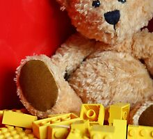 Little Brown Bear by Sammy Nuttall