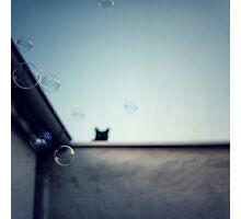 Bubble cat... Photographic Print