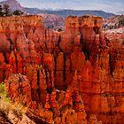 Bryce Canyon 01 by Jo-Anne Gazo-McKim