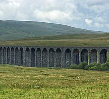 Ribblehead Viaduct by Jamie  Green