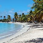Beach at it's BEST by globeboater