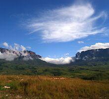 Roraima landscape by dalsan