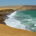 Paracas coast by dalsan