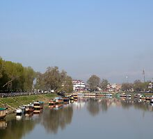Houseboats on the shore of a canal in Srinagar by ashishagarwal74