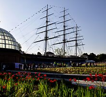 Cutty Sark Gardens by Karen Martin