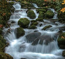 Flowing beauty. by Matthew Trist
