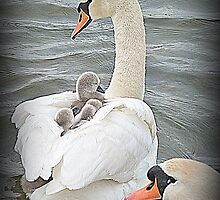 A Family Outing. by Lilian Marshall