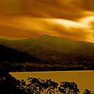 Cape tribulation by Andrew  MCKENZIE