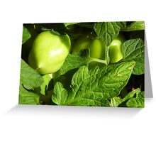 Green, Green Vegatables Of Home Greeting Card