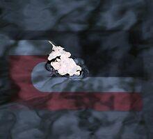 Sovereignty - Tino Rangatiratanga by Hinemaukurangi Simpson