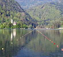Rowing tracks on lake Bled - Slovenia by Arie Koene