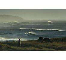 The Beach Boys Photographic Print