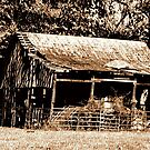 Old Timer's Barn (B&W with a touch of brown) by © Bob Hall