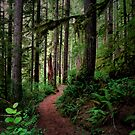 Trails Of Our Heart by Charles & Patricia   Harkins ~ Picture Oregon