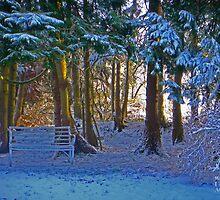 Winter romantic scene by muaofficial