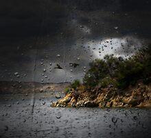 Storm At The Lake by CarolM
