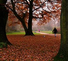 Autumn walk. by Artizana