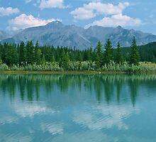 Cascades Pond by Mark Bilham