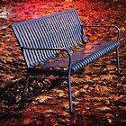 SEATTLE - Blue Bench in Rainy Fall by jsafford