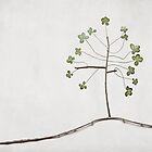 Tree of Luck by Paula Belle Flores