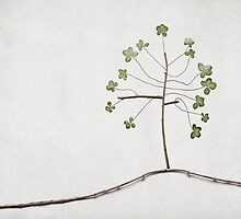 Tree of Luck by BelleFlores