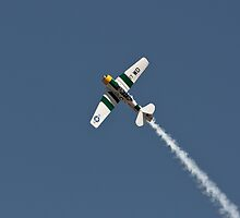 SNJ-5 - North American Aviation T-6 Texan by Buckwhite