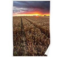 Sunset Through The Rain, Essex Poster