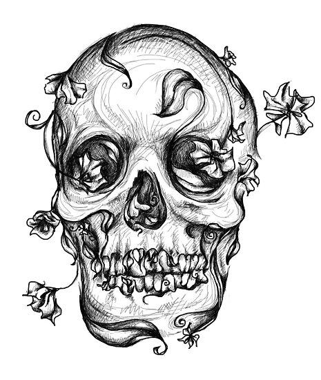 Skull #2 by Shelbeawest