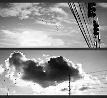 It's love's illusions I recall... by Scott Mitchell