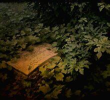 Forgotten by gjameswyrick