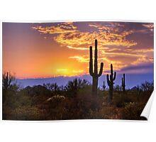 Southwest Desert Sunset  Poster
