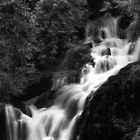 Torc Waterfall Killarney B&W by Phillip Cullinane
