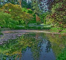 The Lake in Butchart Gardens, Victoria, Canada by AnnDixon