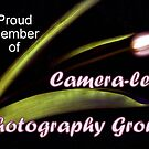 Camera-less Photography banner by bubblehex08