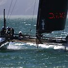 AMERICA&#x27;S CUP ~ San Francisco Style by fototaker