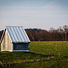 Mini House by Jeanne Sheridan